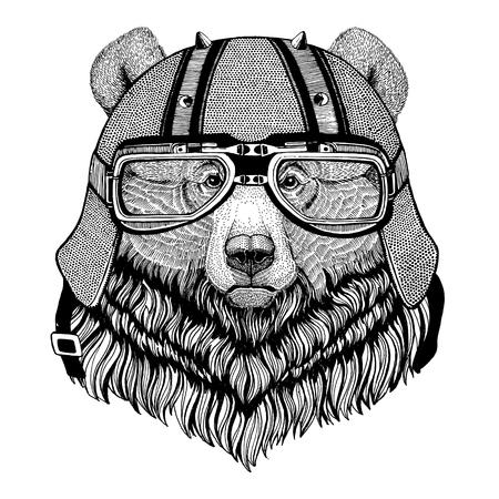 Grizzly bear Big wild bear wearing biker helmet Animal with motorcycle leather helmet Vintage helmet for bikers Aviator helmet