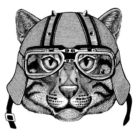 Wild cat Fishing cat wearing biker helmet Animal with motorcycle leather helmet Vintage helmet for bikers Aviator helmet