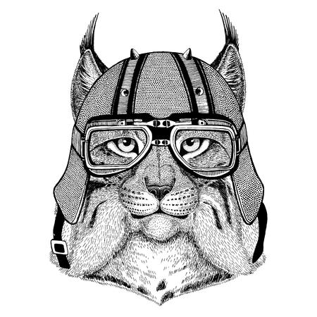 Gato salvaje Lynx Bobcat Trot con casco de motero Animal con casco de cuero de motocicleta Casco de la vendimia para los motoristas Casco del aviador Foto de archivo - 82005521