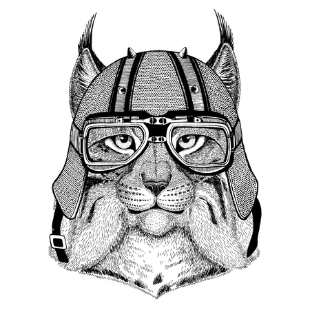 Wild cat Lynx Bobcat Trot wearing biker helmet Animal with motorcycle leather helmet Vintage helmet for bikers Aviator helmet