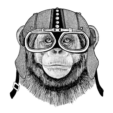 Chimpanzee Monkey Motorcycle, biker, aviator, fly club Illustration for tattoo, t-shirt, emblem, badge,   patch