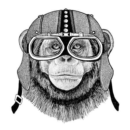 Chimpanzee Monkey Motorcycle, biker, aviator, fly club Illustration for tattoo, t-shirt, emblem, badge,   patch
