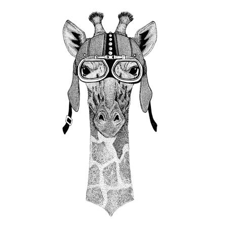 Camelopard, giraffe Motorcycle, biker, aviator, fly club Illustration for tattoo, t-shirt, emblem, badge, patch Banco de Imagens