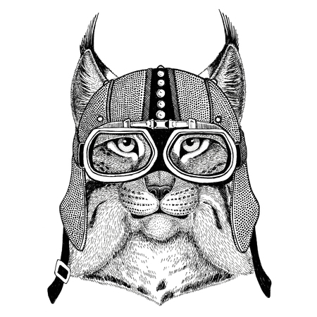 Wild cat Lynx Bobcat Trot Motorcycle, biker, aviator, fly club Illustration for tattoo, t-shirt, emblem, badge, , patch
