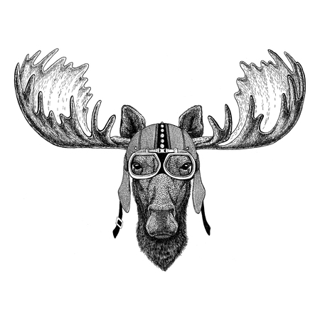 Moose, elk Motorcycle, biker, aviator, fly club Illustration for tattoo, t-shirt, emblem, badge, patch Imagens