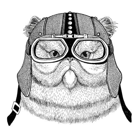 Portrait of fluffy persian cat Motorcycle, biker, aviator, fly club Illustration for tattoo, t-shirt, emblem, badge, logo, patch