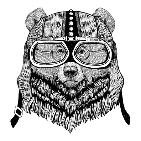 Grizzly bear Big wild bear Motorcycle, biker, aviator, fly club Illustration for tattoo, t-shirt, emblem, badge, logo, patch Stock Illustration - 82071686