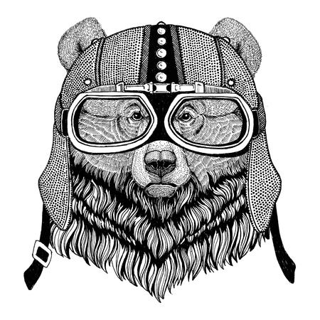 Grizzly bear Big wild bear Motorcycle, biker, aviator, fly club Illustration for tattoo, t-shirt, emblem, badge, logo, patch