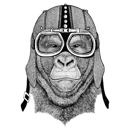 frightful: Gorilla, monkey, ape Frightful animal Motorcycle, biker, aviator, fly club Illustration for tattoo, t-shirt, emblem, badge, logo, patch Stock Photo