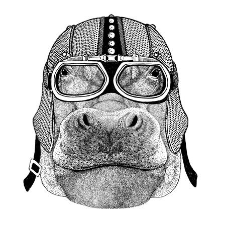 Hippopotame, hippopotame, béhémoth, rivière-cheval Moto, motard, aviateur, mouche club Illustration pour le tatouage, t-shirt, emblème, insigne, logo, patch Banque d'images - 82071711