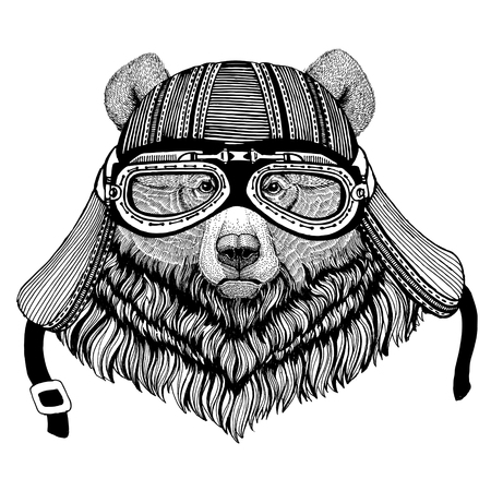 Grizzly bear Big wild bear Wild animal wearing biker motorcycle aviator fly club helmet Illustration for tattoo, emblem, badge, logo, patch Stock Illustration - 82164074