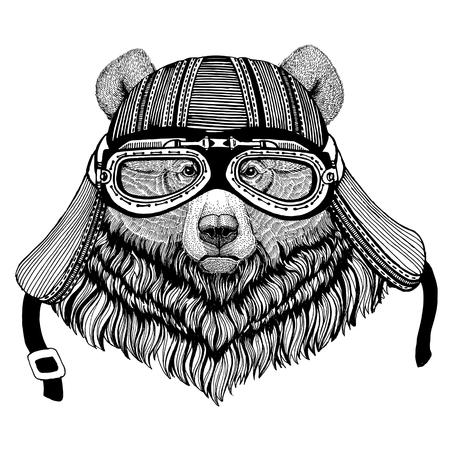 Grizzly bear Big wild bear Wild animal wearing biker motorcycle aviator fly club helmet Illustration for tattoo, emblem, badge, logo, patch