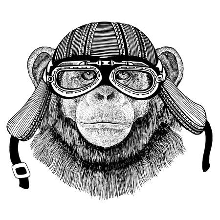 Chimpansee Monkey Wild dier dragen biker motorfiets vliegenier vlieg club helm Illustratie voor tattoo, embleem, badge, patch Stockfoto