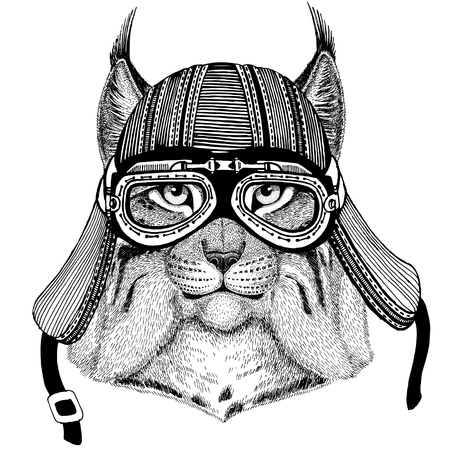 Wild cat Lynx Bobcat Trot Wild animal wearing biker motorcycle aviator fly club helmet Illustration for tattoo, emblem, badge, , patch