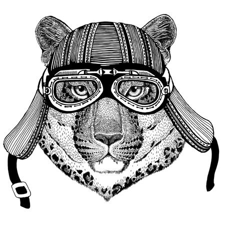 야생 고양이 레오 파 드 고양이 - 오 - 산 표범 야생 동물 입고 바이 커 오토바이 비행가 비행 클럽 헬멧 문신, 엠 블 럼, 배지, 로고, 패치에 대 한 그림