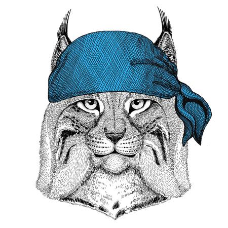 Wild cat Lynx Bobcat Trot Wild animal wearing bandana or kerchief or bandanna Image for Pirate Seaman Sailor Biker Motorcycle