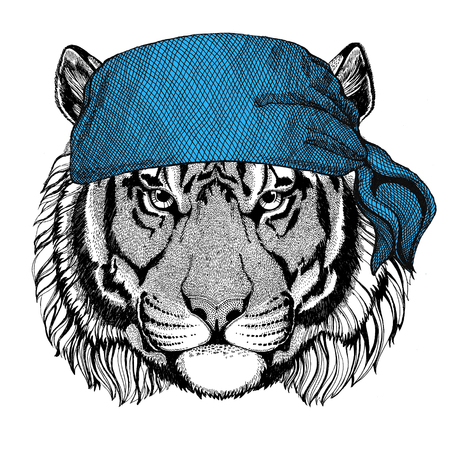 Wild tiger Wild animal wearing bandana or kerchief or bandanna Image for Pirate Seaman Sailor Biker Motorcycle Stok Fotoğraf - 82073941