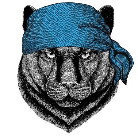 Panther Puma Cougar Wild cat Wild animal wearing bandana or kerchief or bandanna Image for Pirate Seaman Sailor Biker Motorcycle