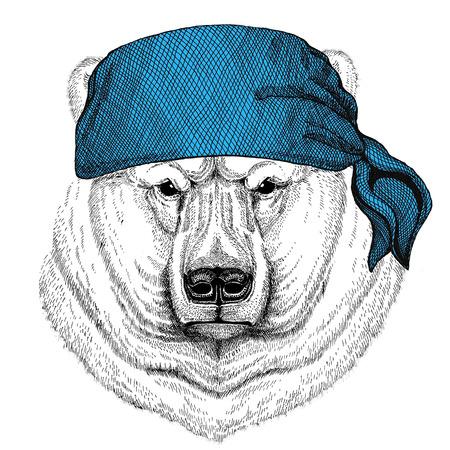 Polar bear Wild animal wearing bandana or kerchief or bandanna Image for Pirate Seaman Sailor Biker Motorcycle Stock Photo - 82072326