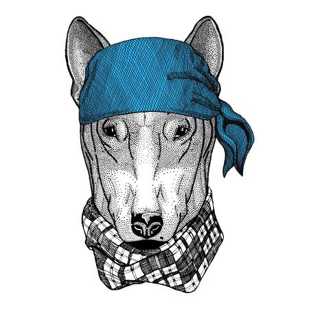 DOG for t-shirt design Wild animal wearing bandana or kerchief or bandanna Image for Pirate Seaman Sailor Biker Motorcycle