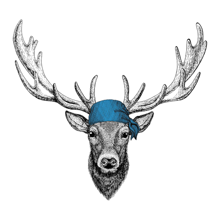 Deer Wild animal wearing bandana or kerchief or bandanna Image for Pirate Seaman Sailor Biker Motorcycle Stock fotó