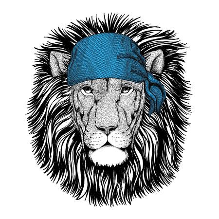 Wild Lion Wild animal wearing bandana or kerchief or bandanna Image for Pirate Seaman Sailor Biker Motorcycle