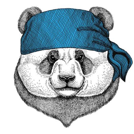 Panda bear, bamboo bear Wild animal wearing bandana or kerchief or bandanna Image for Pirate Seaman Sailor Biker Motorcycle