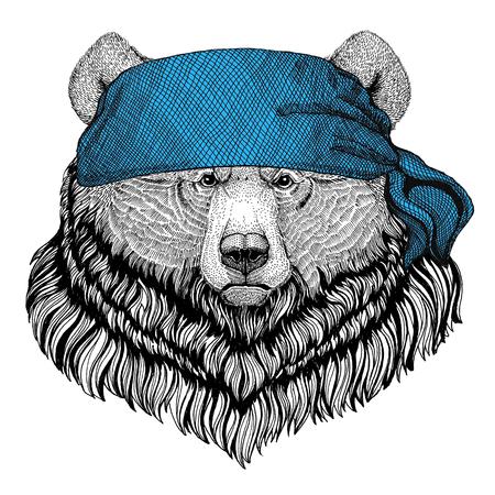 Grizzly bear Big wild bear Wild animal wearing bandana or kerchief or bandanna Image for Pirate Seaman Sailor Biker Motorcycle Stok Fotoğraf