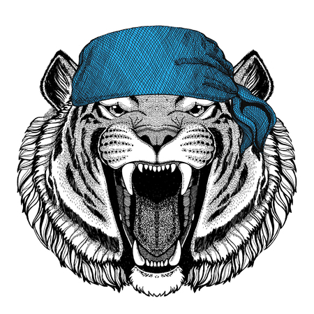 Wild tiger Wild animal wearing bandana or kerchief or bandanna Image for Pirate Seaman Sailor Biker Motorcycle
