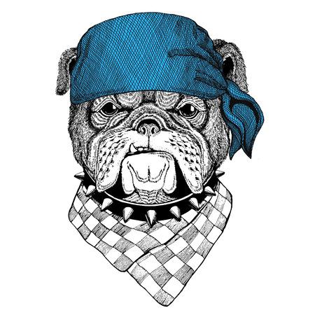 海賊船員セーラー バイカー バイクの身に着けているバンダナやハンカチまたはバンダナ イメージ ブルドッグ野生動物
