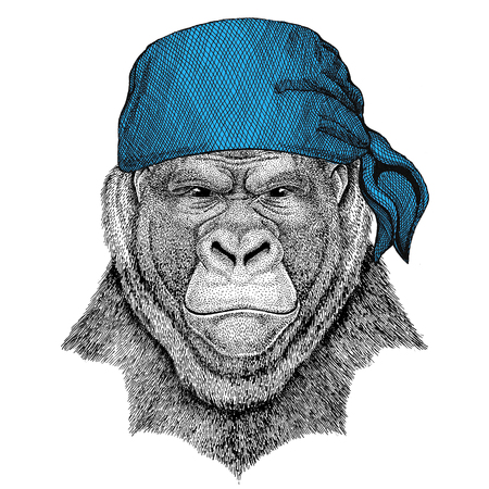 Gorilla, monkey, ape Frightful animal Wild animal wearing bandana or kerchief or bandanna Image for Pirate Seaman Sailor Biker Motorcycle