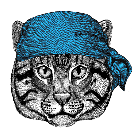 Wild cat Fishing cat Wild animal wearing bandana or kerchief or bandanna Image for Pirate Seaman Sailor Biker Motorcycle