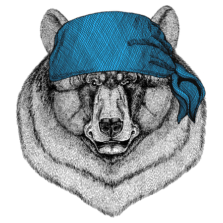 Black bear American bear Wild animal wearing bandana or kerchief or bandanna Image for Pirate Seaman Sailor Biker Motorcycle Stok Fotoğraf - 82071622