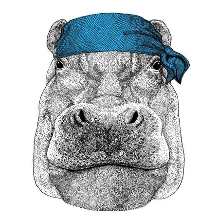 Hippopotame, hippopotame, béhémoth, cheval de rivière Animal sauvage portant bandana ou mouchoir ou bandana Image pour marin de pirate Marin de motocycliste Banque d'images - 82076899