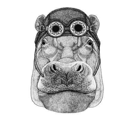Hippopotame, béhémoth, cheval-aviateur portant chapeau d'équitation Chapeau de moto avec des lunettes pour biker Illustration pour t-shirt moto ou aviateur avec animal sauvage Banque d'images - 82108422
