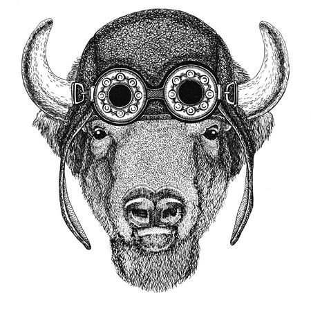 Buffalo, bison, ox, bull dragen vlieger hoed Motorcycle hoed met bril voor biker Illustratie voor motorfiets of vlieger t-shirt met wild dier