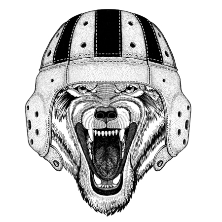 Wolf Dog Wild animal Wild animal wearing rugby helmet Sport illustration