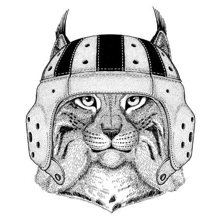 Gatto selvatico Lynx Bobcat Trot Wildlife che indossa il casco di rugby Illustrazione di sport Archivio Fotografico - 82108437