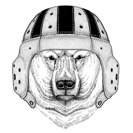 Polar bear Wild animal wearing rugby helmet Sport illustration