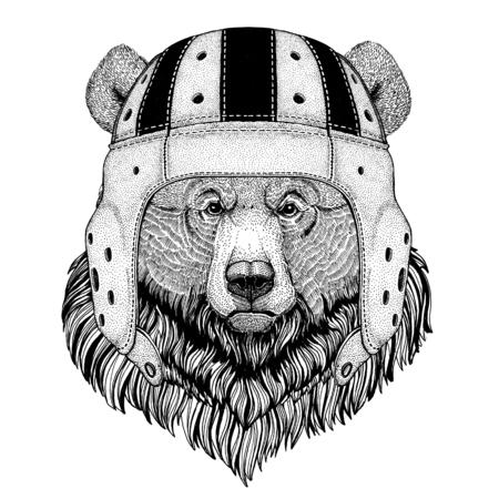 Bear Wild animal wearing rugby helmet Sport illustration Ilustração