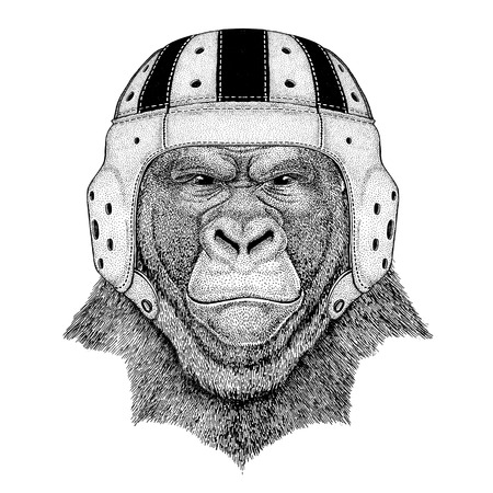 Gorilla, monkey, ape Frightful animal Wild animal wearing rugby helmet Sport illustration
