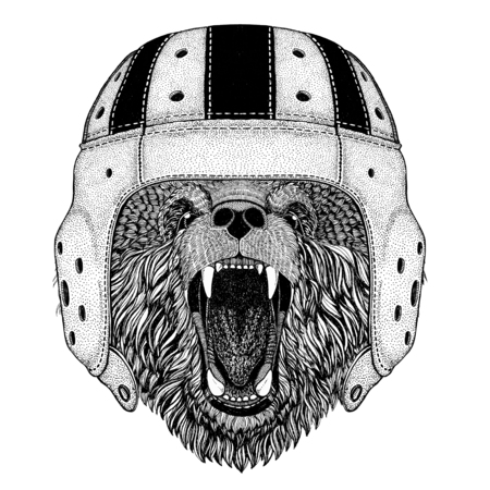 Brown bear Russian bear Wild animal wearing rugby helmet Sport illustration