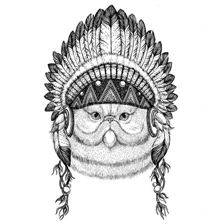 Portret van fluffy Perzische kat Wild dier draagt Indiase hoed Hoofdtooi met veren Boho etnische afbeelding Tribal illustraton Stockfoto