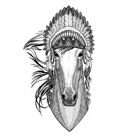 Horse, hoss, knight, steed, courser Wild animal wearing indian hat Headdress with feathers Boho ethnic image Tribal illustraton
