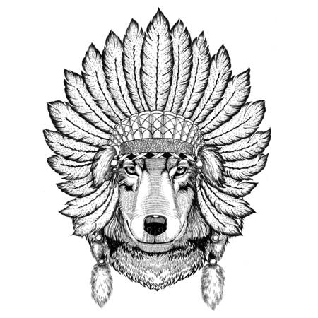 Wolf Dog Wild animal wearing indiat hat with feathers Boho style vintage engraving illustration Image for tattoo, logo, badge, emblem, poster