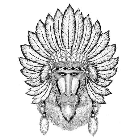 Monkey, baboon, dog-ape, ape Wild animal wearing indiat hat with feathers Boho style vintage engraving illustration Image for tattoo, logo, badge, emblem, poster Reklamní fotografie