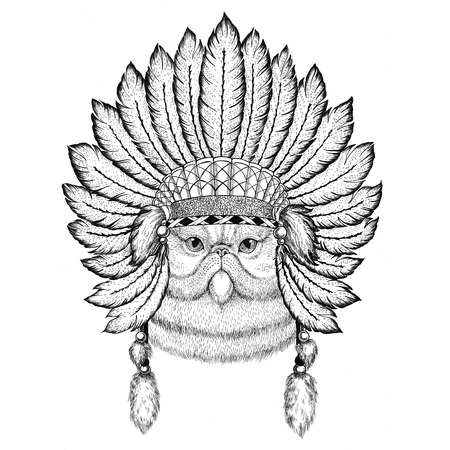 Portrait of fluffy persian cat Wild animal wearing indiat hat with feathers Boho style vintage engraving illustration Image for tattoo, logo, badge, emblem, poster
