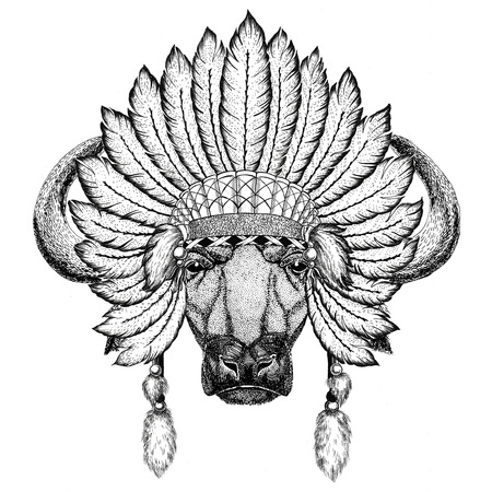 Buffalo, bull, ox Wild animal wearing indiat hat with feathers Boho style vintage engraving illustration Image for tattoo, logo, badge, emblem, poster