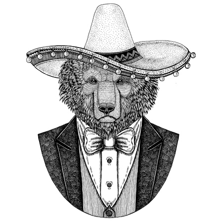 Brown bear Russian bear Hand drawn illustration for tattoo, t-shirt, Bear wearing jacket, vest and bow tie Bear with somrero Mexican national hat