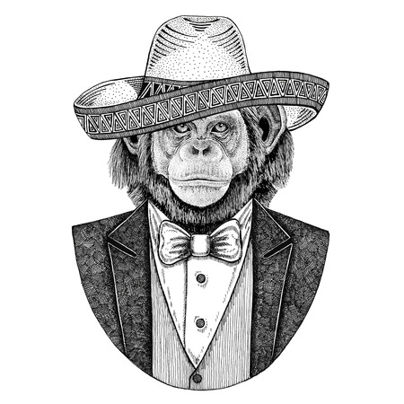 Chimpanzee Monkey Wild animal wearing Sombrero - traditional mexican hat Hand drawn illustration for tattoo, emblem, logo, badge, patch, t-shirt Stock fotó